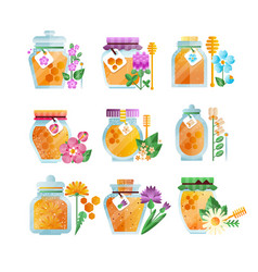 glass jars of herbal honey set natural golden vector image