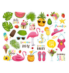 summer set with hand drawn travel elements ice vector image