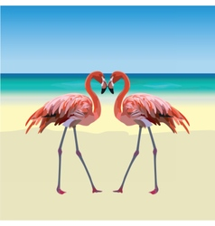Two flamingo birds forming a shape of a heart vector