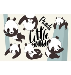Cartoon panda bear set with lettering vector image vector image