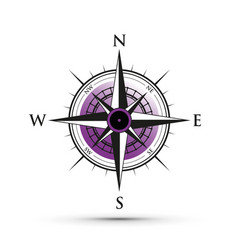 purple compass vector image vector image
