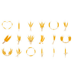 wheat icon set cartoon style vector image vector image