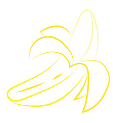banana drawing on white background vector image