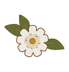 beautiful flower and leafs decorative icon vector image