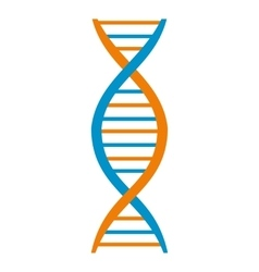 DNA and molecule symbol vector image