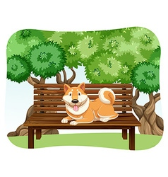Dog on bench vector