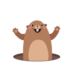 Groundhog popping out of his hole flat vector