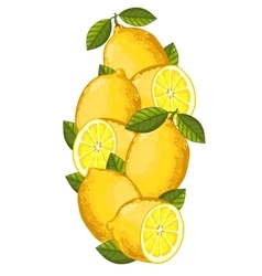 Lemon isolated composition vector