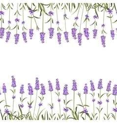 Seamless frame line vector