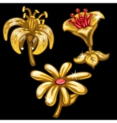 Three flowers of gold on black background vector