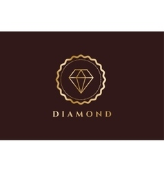 Vintage old diamond logo icon template vector image