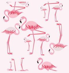 pink flamingo seamless pattern vector image