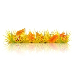 Autumn grass vector image
