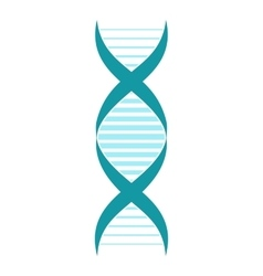 DNA and molecule sign vector image