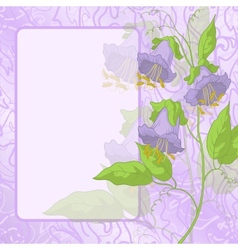Flowers frame and curves vector image