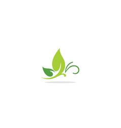 green leaf ornament logo vector image