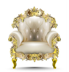 Luxurious baroque armchair soft textile vector