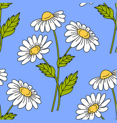 Seamless pattern with daisy flowers vector