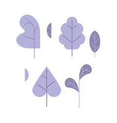 violet plant leaves set isolated on white vector image