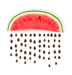 Slice of nice fresh watermelon vector image vector image