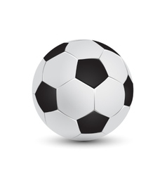 soccer ball and football vector image vector image