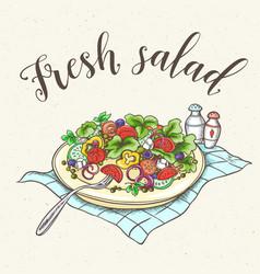 fresh vegetable salad on a plate vector image