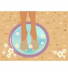 pedicure vector image