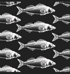 hand drawn fish seamless pattern seabass on chalk vector image