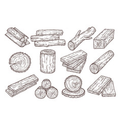 Hand drawn lumber sketch wood logs trunk and vector