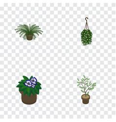 isometric flower set of flowerpot plant blossom vector image
