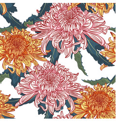 japanese national flower chrysanthemum vector image