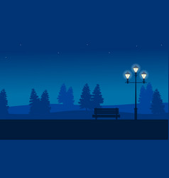at night garden scenery with street lamp vector image