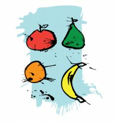 fruit illustration vector image vector image