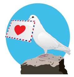 The Dove with a love letter vector image vector image