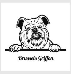 Brussels griffon - peeking dogs - breed face head vector