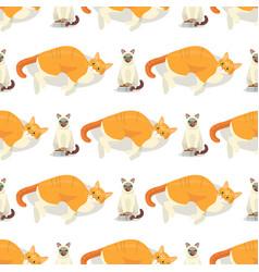 cat breeds cute kitty pet cartoon cute animal vector image