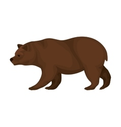 Color image with bear walking vector