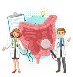 Doctor and human intestine on white background vector