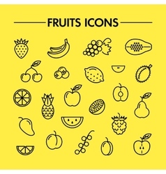 Fruits and berries line icons vector
