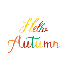 hello autumn modern brush phrase vector image