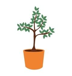 Plant in pot tree nature icon graphic vector