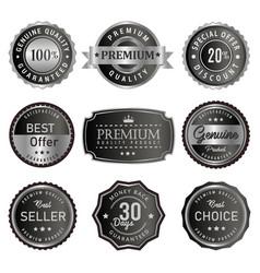 set premium silver labels vector image