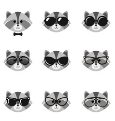 cute cartoon raccoons with sunglasses vector image