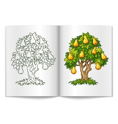 pear tree with ripe fruits on vector image