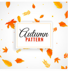 Beautiful autumn leaves pattern design vector