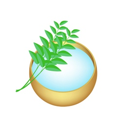 Holy Water in Golden Bowl with Green Leaves vector image