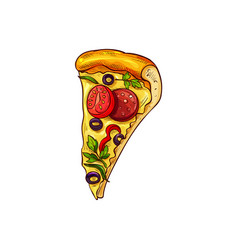 Pepperoni pizza with mushrooms and tomatoes vector