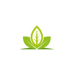 plant logo nature vector image