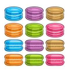 set assorted macaroons vector image