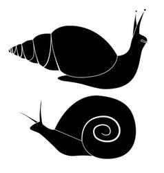 set black silhouette snails various shapes vector image